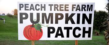 Free Pumpkin Patch Wichita Ks by The Peach Tree Farm Peaches Pumpkin Patch Straw Maze And
