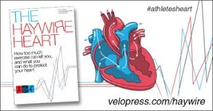The Haywire Heart Hay 600x315 Wave