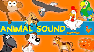 Animals Sounds | Sounds Of The Animals Song | Learn Animal And ... Peekaboo Animal For Fire Tv App Ranking And Store Data Annie Kids Farm Sounds Android Apps On Google Play Cuddle Barn Animated Plush Friend With Music Ebay Public School Slps Cheap Ipad Causeeffect The Animals On Super Simple Songs Youtube A Day At Peg Wooden Shapes Puzzle Toy Baby Amazoncom Melissa Doug Sound 284 Best Theme Acvities Images Pinterest Clipart Black And White Gallery Face Pating Fisher Price Little People Lot Tractor