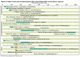 human evolution stages timeline the emergence of
