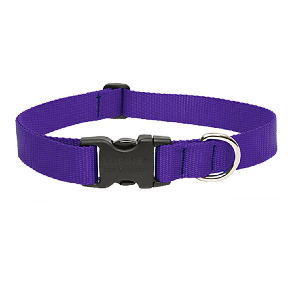 "LupinePet Adjustable Dog Collar - Purple, 1"" x 12-20"""