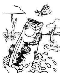 Bass Fish Catching Dragonfly Coloring Pages