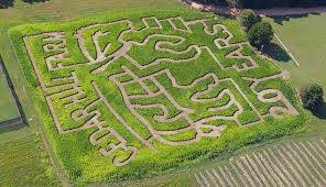 Boyd Tx Pumpkin Patch by Awesome Corn Mazes In Mississippi You Have To Do This Fall