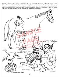 Little Book Of Horses Coloring With Ride Song