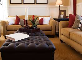 Brown Couch Living Room by Feng Shui Living Room