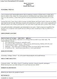 Long Term Unemployed CV Example
