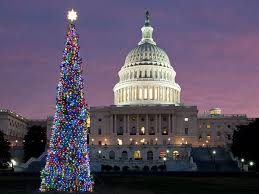 What Is The Best Christmas Tree Variety by The Best Holiday Light Displays U0026 Events In Washington Dc