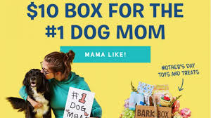 BarkBox Coupon Code - $10 First Box + Mother's Day Theme ... Bark Box Coupons Arc Village Thrift Store Barkbox Ebarkshop Groupon 2014 Related Keywords Suggestions The Newly Leaked Secrets To Coupon Uncovered Barkbox That Touch Of Pit Shop Big Dees Tack Coupon Codes Coupons Mma Warehouse Barkbox Promo Codes Podcast 1 Online Sales For November 2019 Supersized 90s Throwback Electronic Dog Toy Bundle Cyber Monday Deal First Box For 5 Msa