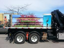 Great Semi Truck Wrap Done By Speedpro Imaging Oshawa For Able Tree ... Lewis Utility Truck Sales Inc Truck Equipment Photos Trucks Loaded With Tree Trunks Along The Roadside In Front Of A Utility Vehicles Trimmer Trucks From Terex Products New Demo Bucket For Sale For Hess Toy Comes To Life Winter Acre Green Food Seattle Roaming Hunger Asplundh Expert Co Willow Grove Pa Rays Wright Service Reaps Rewards From Long Spray Daf Xf 95480 Dalys Vilkikai Mp Trucks Falafel Salt Lake City