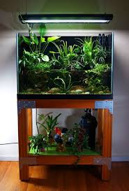 Cool 30+ Awesome Fish Tank Ideas Https://gardenmagz.com/30-awesome ... Fish Tank Designs Pictures For Modern Home Decor Decoration Transform The Way Your Looks Using A Tank Stunning For Images Amazing House Living Room Fish On Budget Contemporary In Contemporary Tanks Nuraniorg Office Design Sale How To Aquarium In Photo Design Aquarium Pinterest Living Room Inspiring Paint Color New At Astonishing Simple Best Beautiful Coral Ideas Interior Stylish Ding Table Luxury