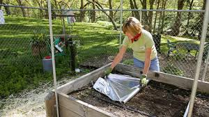 Mulch in Your Ve able Garden—Beyond the Basics