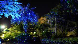 Christmas Trees Kmart by Laser Christmas Lights Kmart Lights Decoration