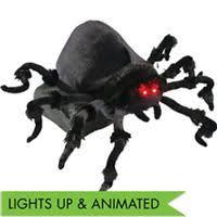 Spirit Halloween Lexington Ky by Halloween Spiders Giant Spiders Spider Webs U0026 Spider