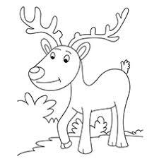 Reindeer Coloring Page Simple Sheet