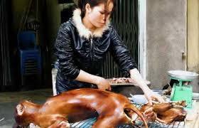 cuisiner pour chien les chinois mangent ils réellement du chien beijing2012