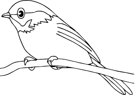 More Images Of Bird Printable Coloring Pages