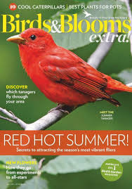 100 Download Interior Design Magazine Magazines PDF Free Download