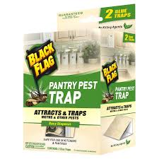 Decorative Lobster Traps Small by Black Flag Pantry Moth Trap 2 Count Meijer Com