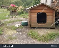 Wooden Dog Kennel Seems Abandoned Backyard Stock Photo 710624719 ... Whosale Custom Logo Large Outdoor Durable Dog Run Kennel Backyard Kennels Suppliers Homestead Supplier Sheds Of Daytona Greenhouses Runs Youtube Amazoncom Lucky Uptown Welded Wire 6hwx4l How High Should My Chicken Run Fence Be Backyard Chickens Ancient Pathways Survival School Llc Diy House Plans Deck Options Refuge Forums Animal Shelters The Barn Raiser In Residential Industrial Fencing Company
