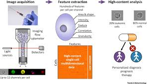 A Translational Innovation Forum Ppt Diagnostic Potential Of Imaging Flow Cytometry Trends In Biotechnology