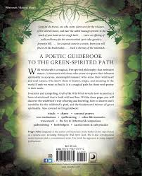 Craft Of The Wild Witch Green Spirituality Natural Enchantment Poppy Palin 9780738705774 Amazon Books