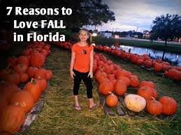 Pumpkin Patch Tampa 2014 by 7 Reasons To Love Fall In Florida