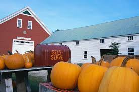 Lane Farms Pumpkin Patch 2015 by Visiting Pumpkin Patches In Kansas City