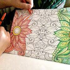 We Finally Found One Of Those Adult Coloring Books At Wa Flickr