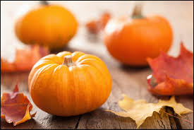 Largest Pumpkin Ever Weight by What Are The Health Benefits Of Eating Pumpkin Here Are 11