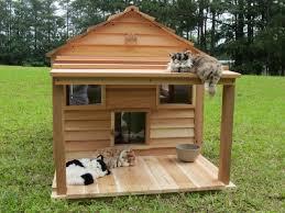 cats on deck cat cottage 36 x 37 interior ledges escape hatch