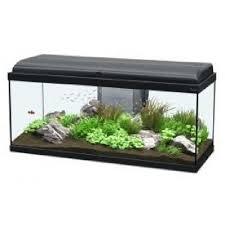 aquarium aquatlantis achat vente aquarium aquatlantis pas cher