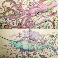 Coloring Animorphia Coloringbook Octopus