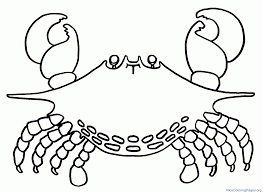 Download Free Printable Horseshoe Crab Coloring Pages Template For Kids Colouring Sheets Drawing