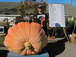 Atlantic Giant Pumpkin Record by Giant Pumpkins British Columbia U2013 British Columbia U0027s 1 Resource