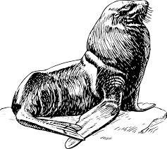 Seal Clip Art at Clker vector clip art online royalty free