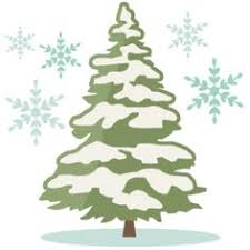 Pine clipart winter 2