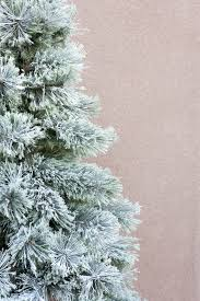 Christmas Tree Flocking Spray Can by Easy Flocked Christmas Tree Instructions All Things Thrifty
