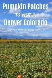 Colorado Pumpkin Patch by 9 Best Project Hard Rock Images On Pinterest Cafes Dream