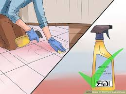 Fleas Live On Wood Floors by 5 Ways To Rid Your Pet Of Fleas Wikihow