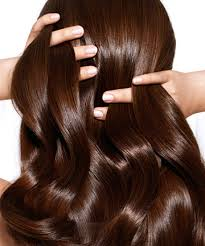 11 Best Hair Color Products for 2017 Hair Color Reviews