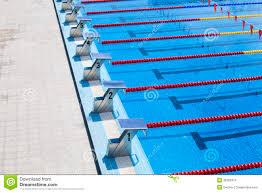 Olympic Swimming Starting Blocks Interior Design