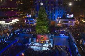 Christmas Tree Disposal Nyc by Lighting Of Christmas Tree 2014 Christmas Lights Decoration