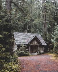 """andrewtkearns """" Cabin in the woods """""""