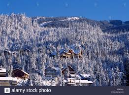 100 Whistler Tree House BC British Columbia Canada Ski Resort Village