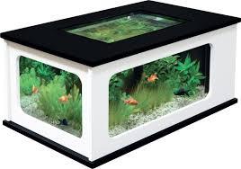 grande table basse aquarium le bois chez vous