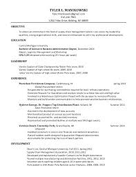 It Business Analyst Resume Samples Newest Sample For Doc India