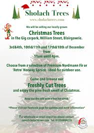 Nordmann Fir Christmas Trees Wholesale by Christmas Tree Harvest Starts In October And Where To Buy Our