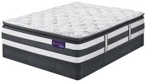 Serta Dog Beds by Serta Icomfort Hybrid Observer Super Pillowtop From Bedzzz Express
