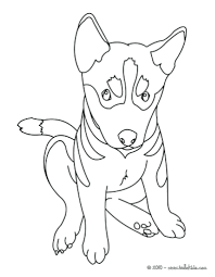 Coloring Pages Cute Dogs Puppies Free Printable Of And Kittens Christmas Ideas Beautiful Shepherd Puppy