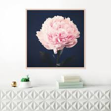 Bold Inspiration Peony Wall Art Or Wisteria PrevNext Australia Canvas Flowers Metal Decals Pink